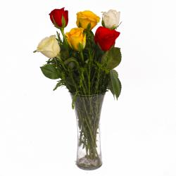 Glass Vase of Six Multi Color Roses for Pune