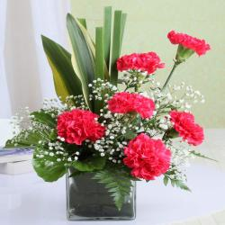 Glass Vase with Six Pink Carnation for Moradabad