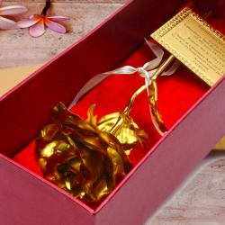 Gold Plated Single Rose Gift Box for Jaipur
