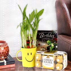Good Luck Bamboo Plant, Birthday Greeting Card With Ferrero Rocher Box. for Pune