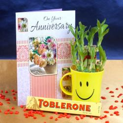 Good Luck Plant,Anniversary Card and Chocolates for Kolkata