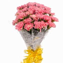 Hand Bunch of 24 Pink Carnations for Baroda