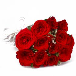 Love Bloom with 12 Red Roses for Shimla