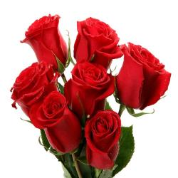 Lucky Seven Red Roses ! for Thanjavur