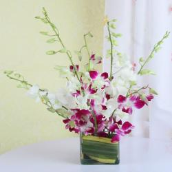 Mixed Orchids in a Glass Vase for Kolkata