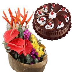 Paradise Flower Bouquet and Chocolate Cake for Raichur