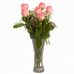 Perfect Vase of Six Pink Roses for Lucknow