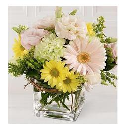 Pink and Yellow Mix Flowers in Vase