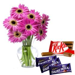 Pink Gerberas and Chocolates for Hyderabad