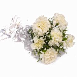 Pure White Six Carnations Bouquet for Noida