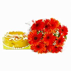 Red Gerberas Hand Tied and Butterscotch Cake for Ghaziabad