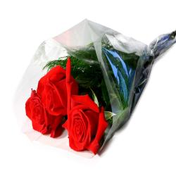 Roses For Missing You for Ghaziabad