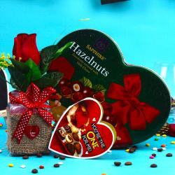 Sapphier Hazelnuts Milk Chocolates with Love Roses for Raipur