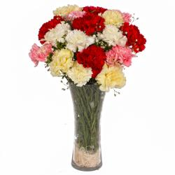 Seventeen Mix Color Carnations Arranged in Vase for Bharuch