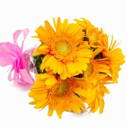 Six Yellow Gerberas Hand Tied Bunch for Dewas