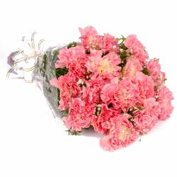Sixteen Pink Carnations Hand Tied Bunch for Ghaziabad