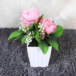 Small and Cute Artificial Bonsai Plant for Noida