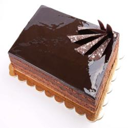 Square Shape Dark Chocolate Cake for Madras
