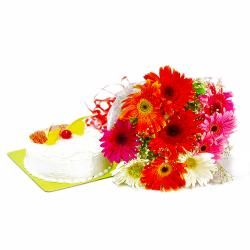 Ten Mix Color Gerberas Bunch with Pineapple Cake for Gurgaon