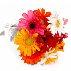 Ten Mix Color Gerberas Hand Tied Bouquet for North Goa