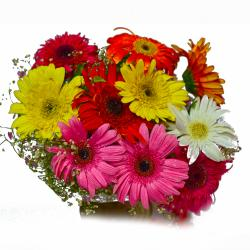 Ten Mix Colour Gerberas Bouquet for Hyderabad