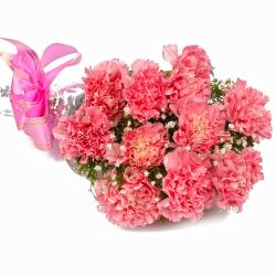 Ten Soft Pink Carnations Cellephane Wrapped for Jalandhar