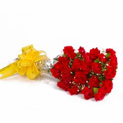Twenty One Red Carnations Hand Tied Bunch for Delhi