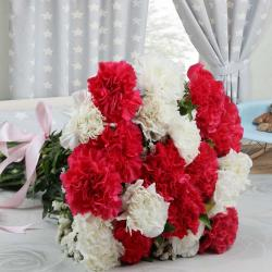Twenty Pink and White Carnations Bouquet for Mumbai