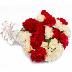 Twenty Red and White Carnations Bunch for Delhi