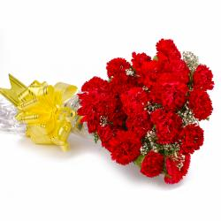 Twenty Red Carnations Bouquet Cellophane Wrapped for Kolkata
