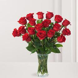 Two dozen Red Roses in vase for Kanchipuram