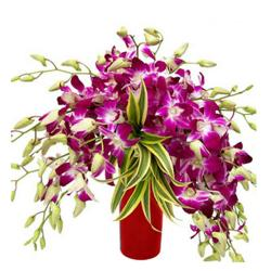 Vase Arrangement Of 10 Orchids