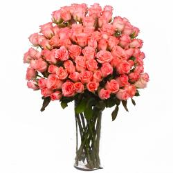 Vase Cointaing 100 Pink Roses for Shimla