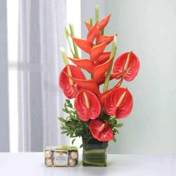 Vase of 5 Red Anthurium and 2 Big Bird with 16 Pcs Ferrero Rocher Box for Baroda