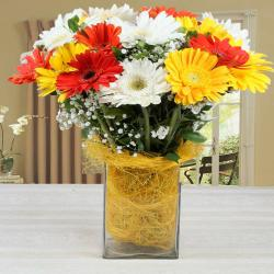 Vase of Mixed Gerberas Arrangement
